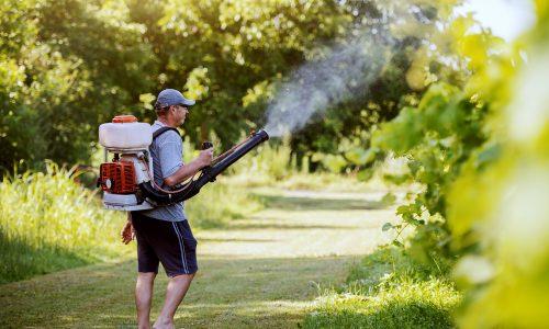 Mosquito Control Calgary