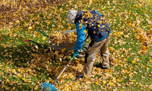 Spring Clean Up Calgary